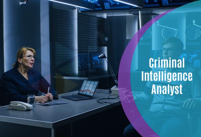 Criminal Intelligence Analyst